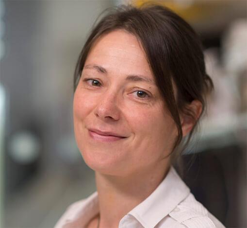 Menna Clatworthy, MBBCh, PhD, FRCP