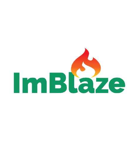 """Big Picture Learning """"ImBlaze"""" logo, with green text and a flame icon over the letter """"a"""" (CZI Education Resource Library)."""