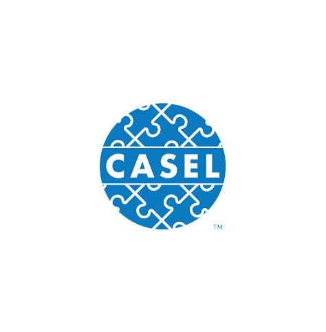 Circular CASEL logo, with blue with white text and a pattern of interlocked puzzle pieces in the background (CZI Education Resource Library).