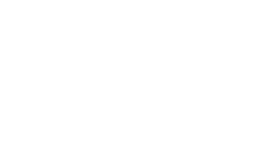 Borealis Philanthropy logo, in white with radiating arcs from top left - CZI Racial Equity, Diversity & Inclusion Grants.