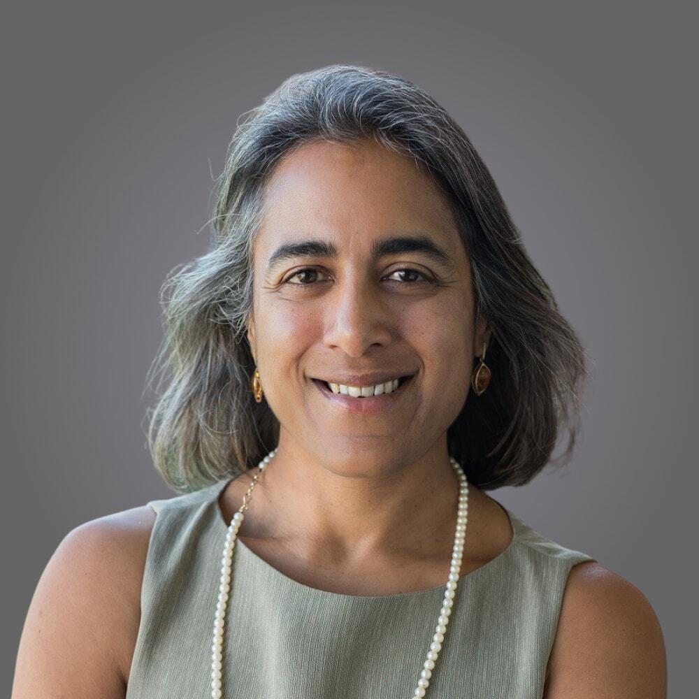 Hemai Parthasarathy, Hemaisphere, LLC (CZI Imaging, Advisory Board).